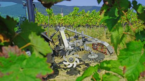 Foto: Bähr Weinbautechnik